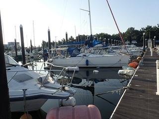 boatpark 01.jpg