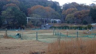yasuura 02.JPG
